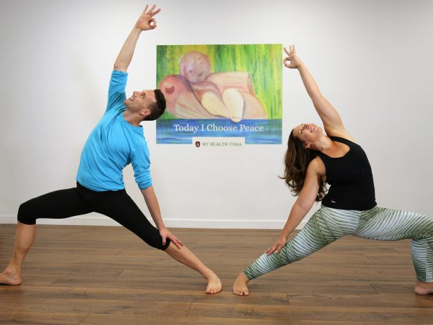 Level 2 Teacher Training –  Module 4: Traditional meets Modern Yoga course image